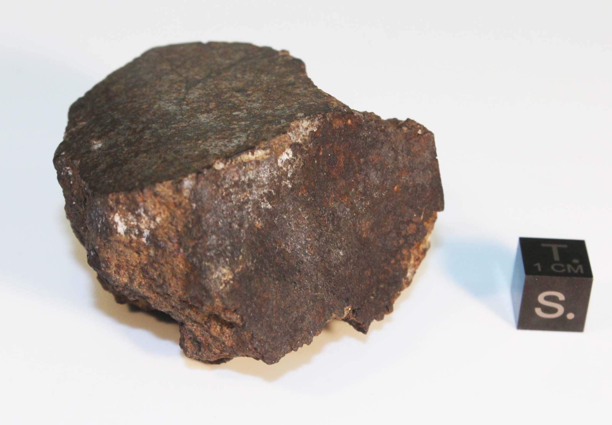 Fragmento do meteorito de L'Aigle, pertencente à Coleção de Meteorítica do Museu Nacional/UFRJ. Foto tirada antes do incêndio que acometeu a Instituição, ocorrido em 02/09/2018. Fonte: Museu Nacional/UFRJ.